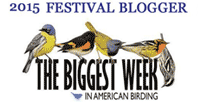 The Biggest Week in American Birding - Official Blogger